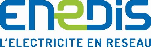 Elagage à proximité des réseaux électriques Haute Tension